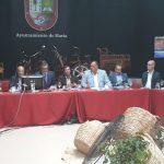 Pleno del Cabildo en Haría (1)