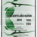 Cartel Concierto Año Nuevo
